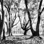 BICYCLOVE SHARE (PHOTOS WITH IPAD) # April 1-16, 2014
